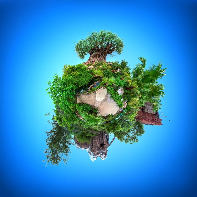 Disney's Animal Kingdom tiny planet featuring the Tree of Life and Expedition Everest