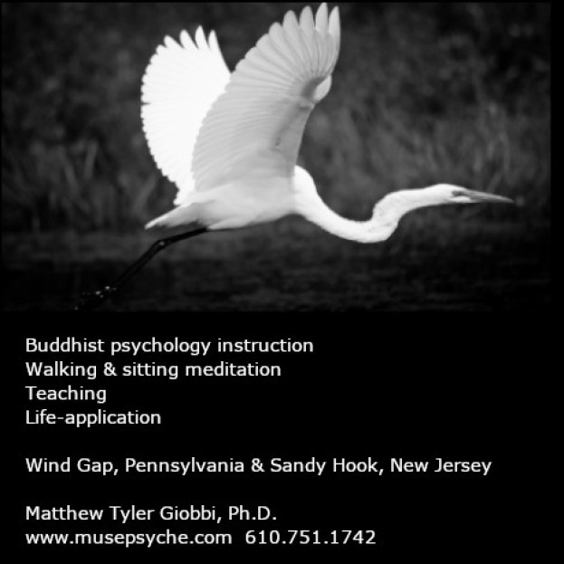 matthew_giobbi_buddhist_psychology