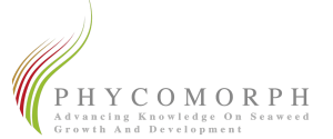 phycomorphlogo3
