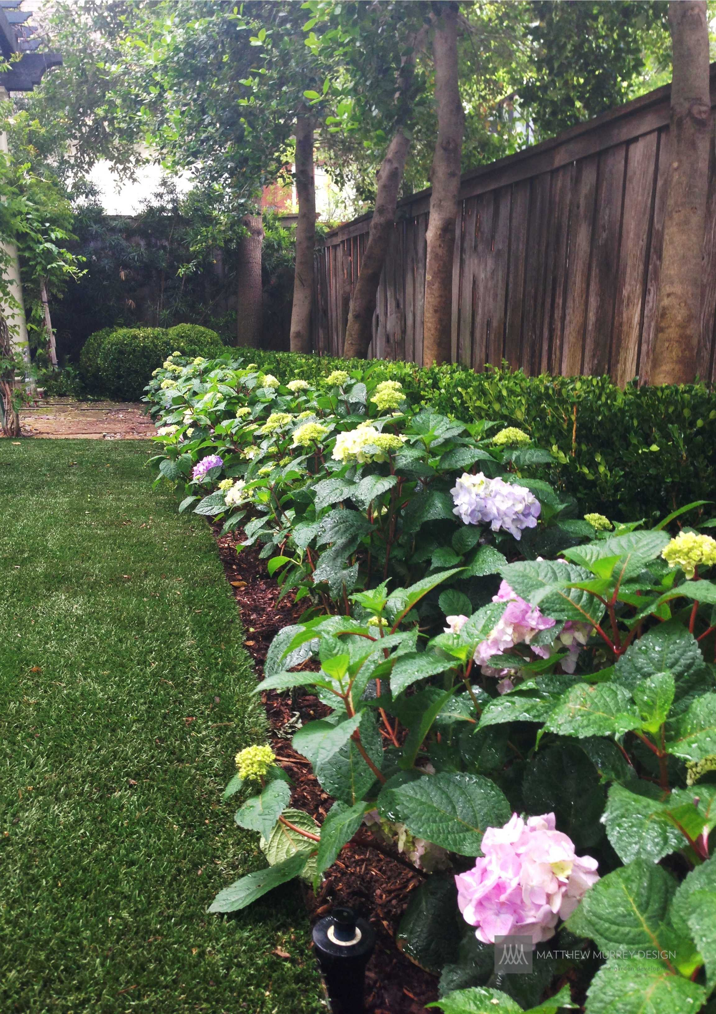Landscape Ideas For Shaded Areas
