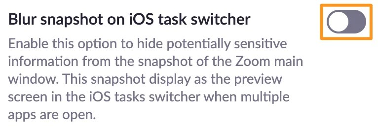 Screenshot of Zoom meeting settings - Blur snapshot on iOS task switcher