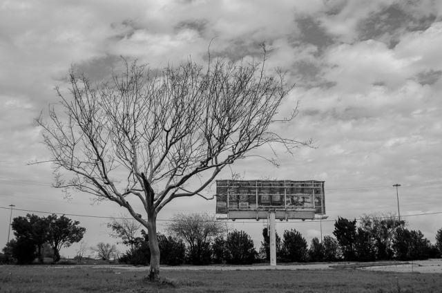 A dead tree and an old rusty Billboard in Arlington, Texas