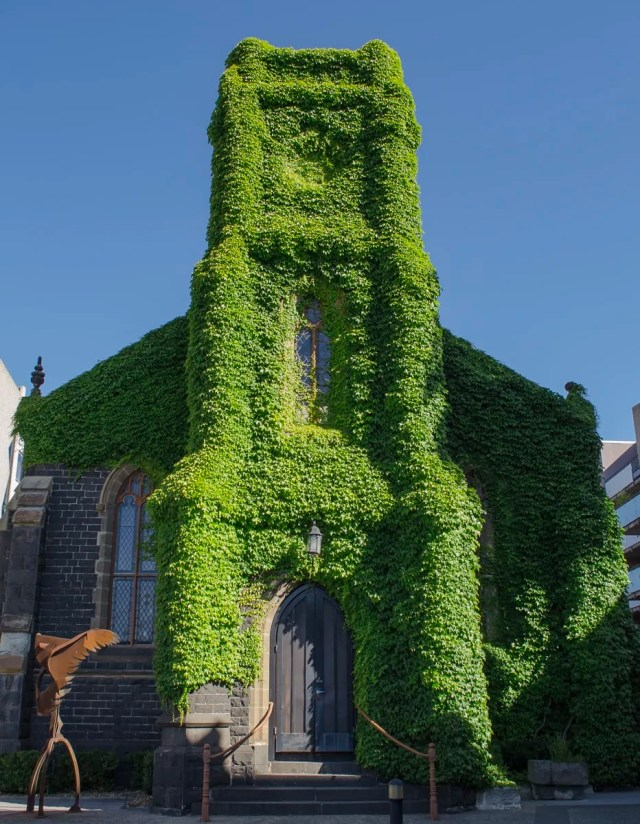 An old church covered with vines in Melbourne, Australia