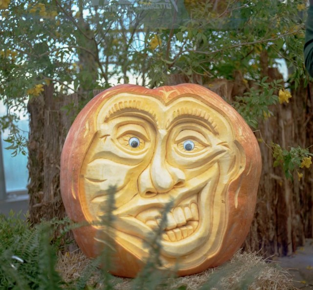 A carved pumpkin at the State Fair of Texas