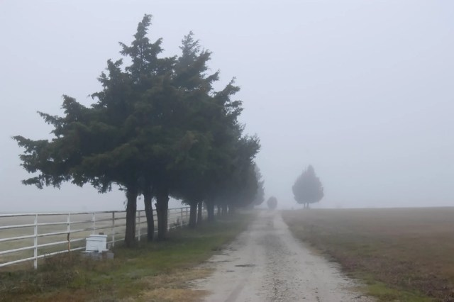 A foggy country road