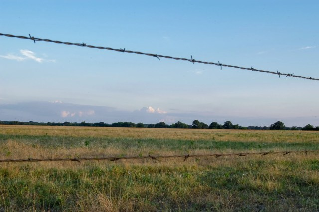 An East Texas landscape with barbed wire