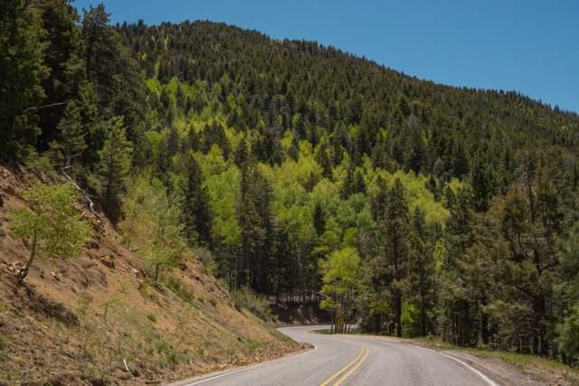 A winding road in the Sangre de Cristo Mountains