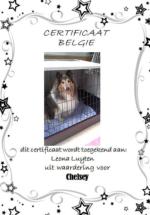 Adoptie-Chelsey