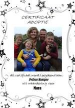 Adoptie-Mara