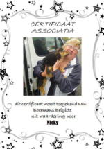 Adoptie-Nicky