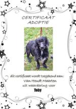 Adoptie-Toby