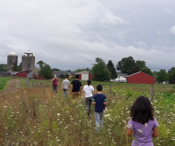 Great start! Farm Stay- session 1