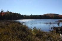 Bacon Pond, Pillsbury State Park