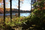Bear Pond Pillsbury State Park