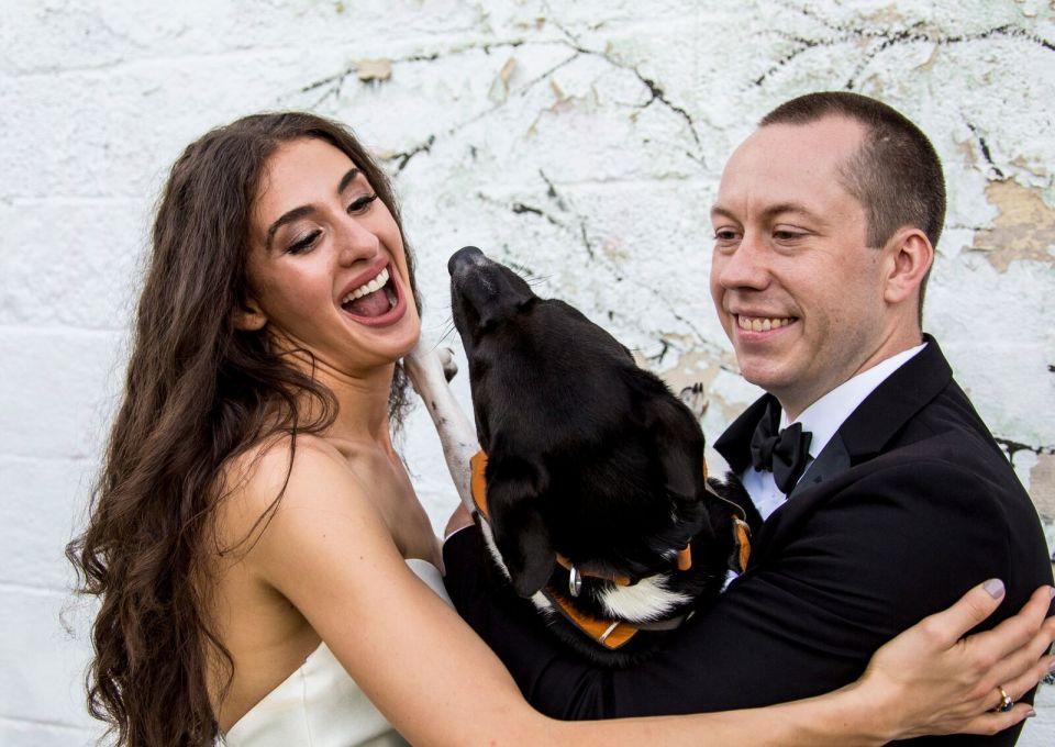 spirit pittsburgh pa wedding dog at the wedding photo