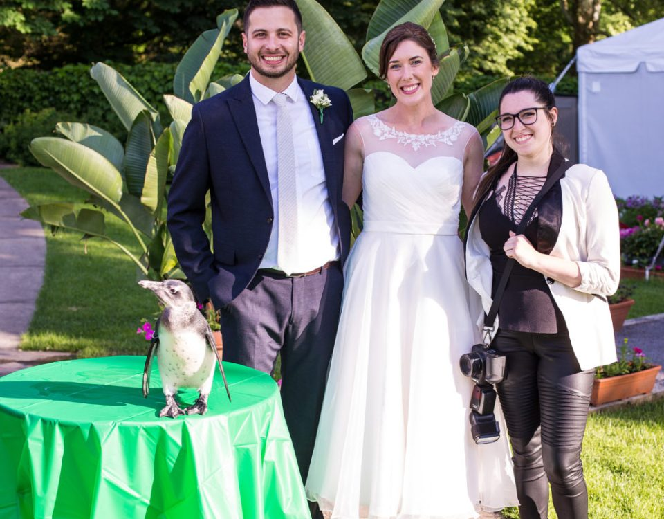 second photographer, Kayla Amendola, poses with bride, groom, and penguin at Pittsburgh National Aviary