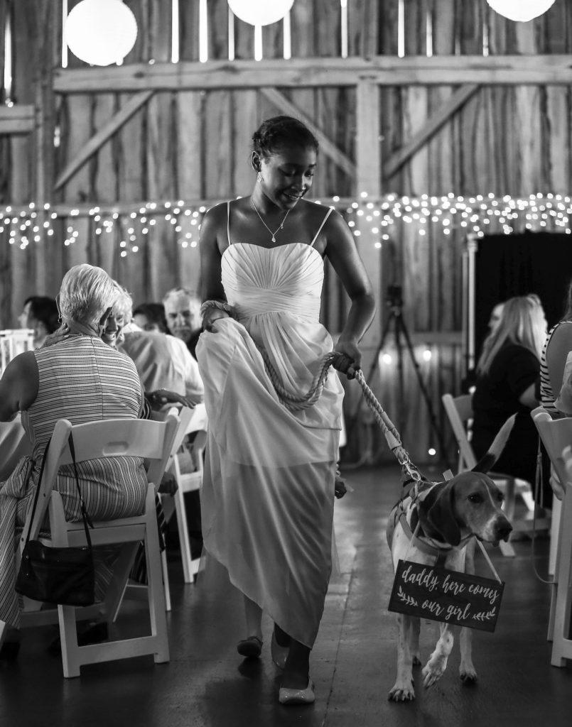 Bridesmaid escorts couple's dog down the aisle at Betsy's Barn wedding
