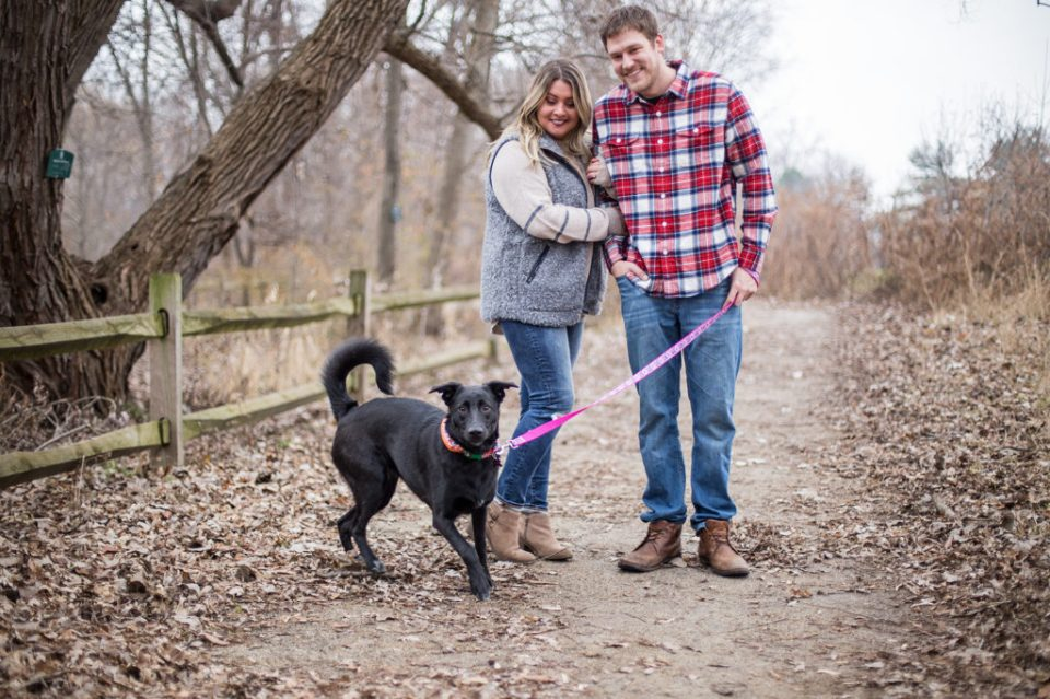 Couple walk their dog during fall engagement photos in Frontier Park in Erie, PA