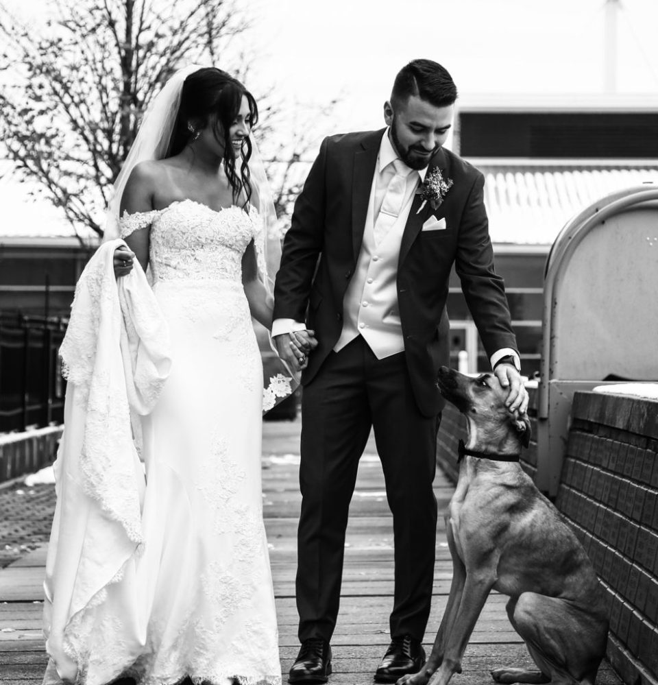 Groom pets couple's dog at Dobbin's Landing during downtown Erie wedding