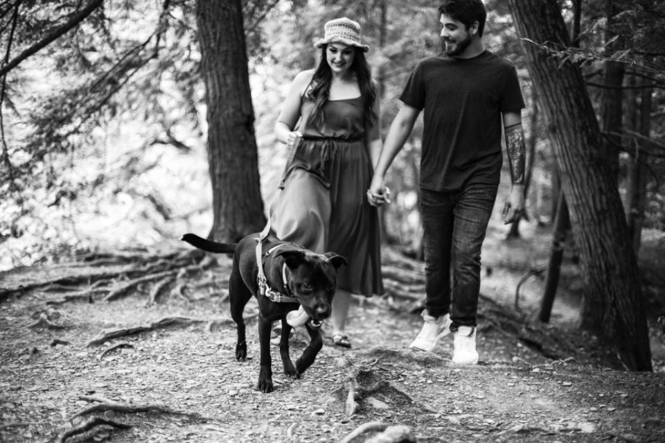 Couple holds hands and walks their dog at Wintergreen Gorge