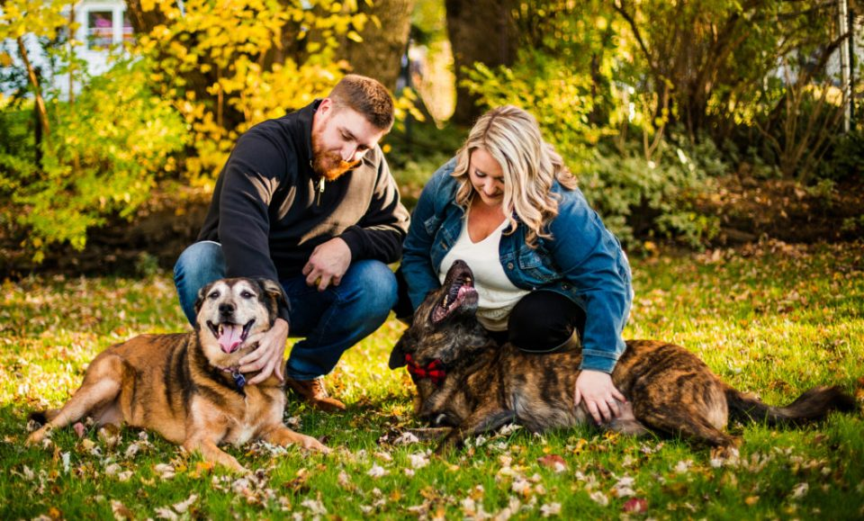 Couple plays with their dogs for their Erie, PA engagement photos