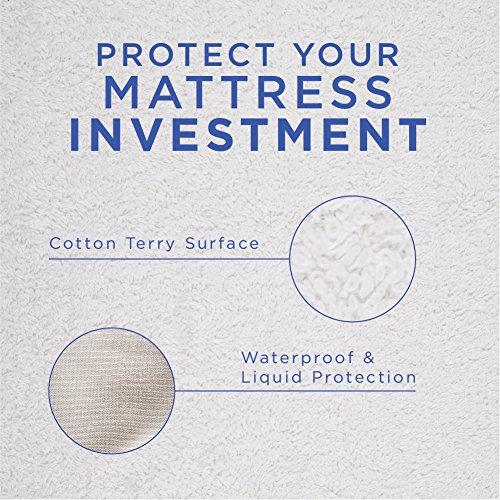 Sky Bedding Mattress Protector Premium Terry Cotton Cover 100 Waterproof Hypoallergenic Breathable Vinyl Free Lifetime