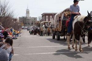 Columbia, Tennessee Mule Day
