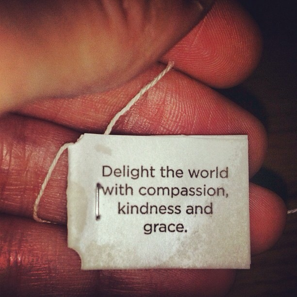 delight in kindness