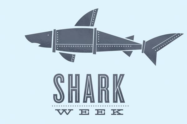 https://i0.wp.com/mattsoncreative.com/blog/wp-content/uploads/2010/08/shark-week-031.jpg