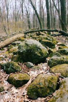 These border rock piles can be found all around Wisconsin. At one point they marked property lines.