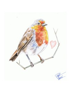 water colour painting of an english robin by matt stewart
