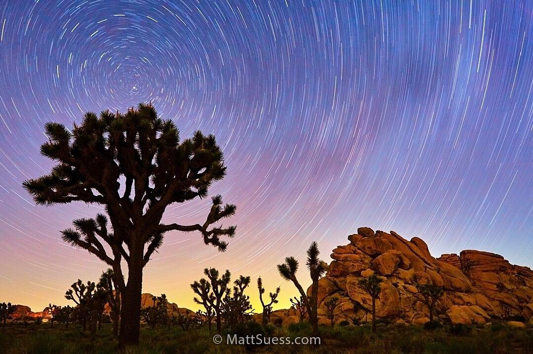Joshua Tree National Park, Instagram post date: