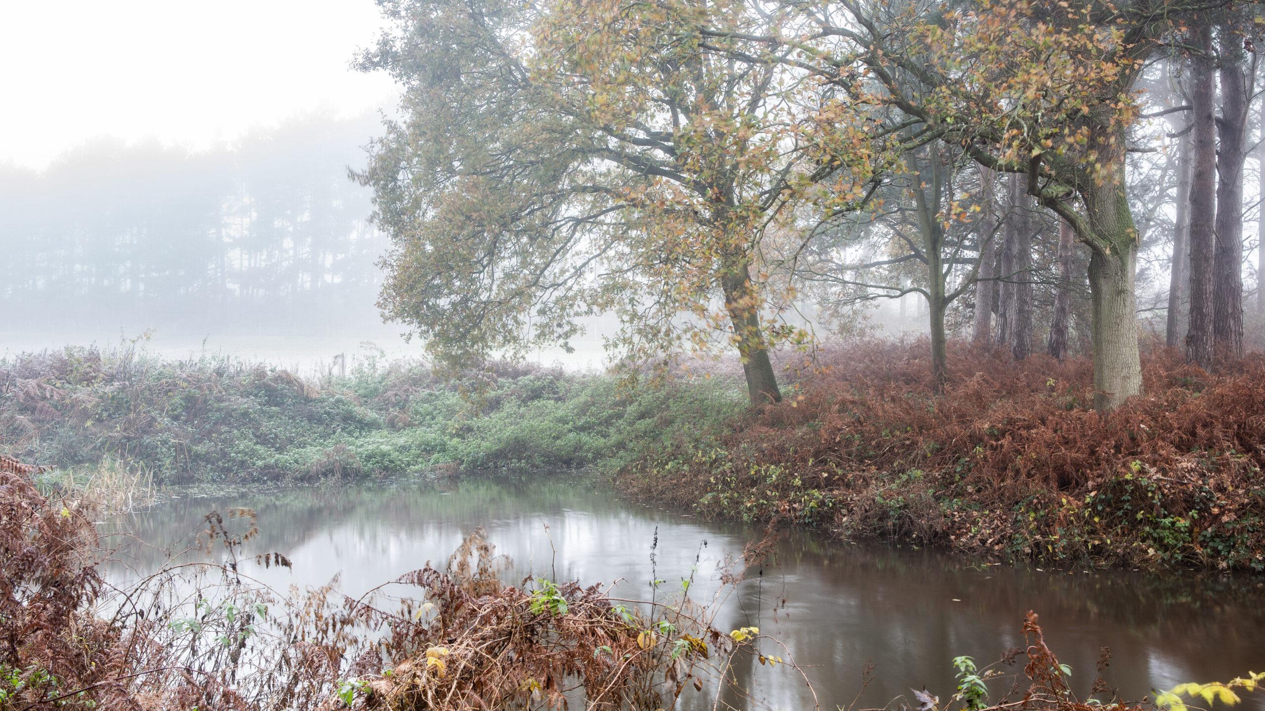 Nebulous, Suffolk