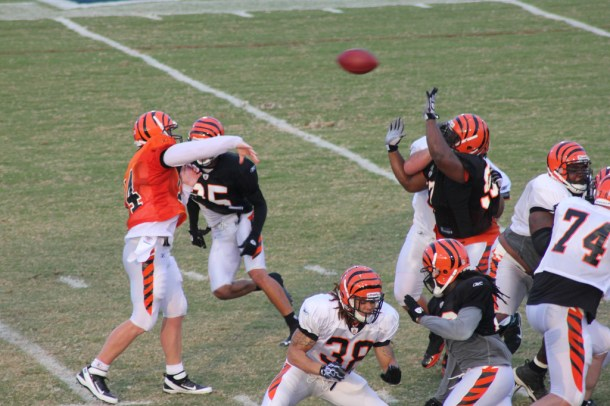 Andy Dalton is a heady player who Lillibridge felt comfortable waiting for. Photo by Navin75.