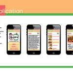 Application Guidelines: Mobile App