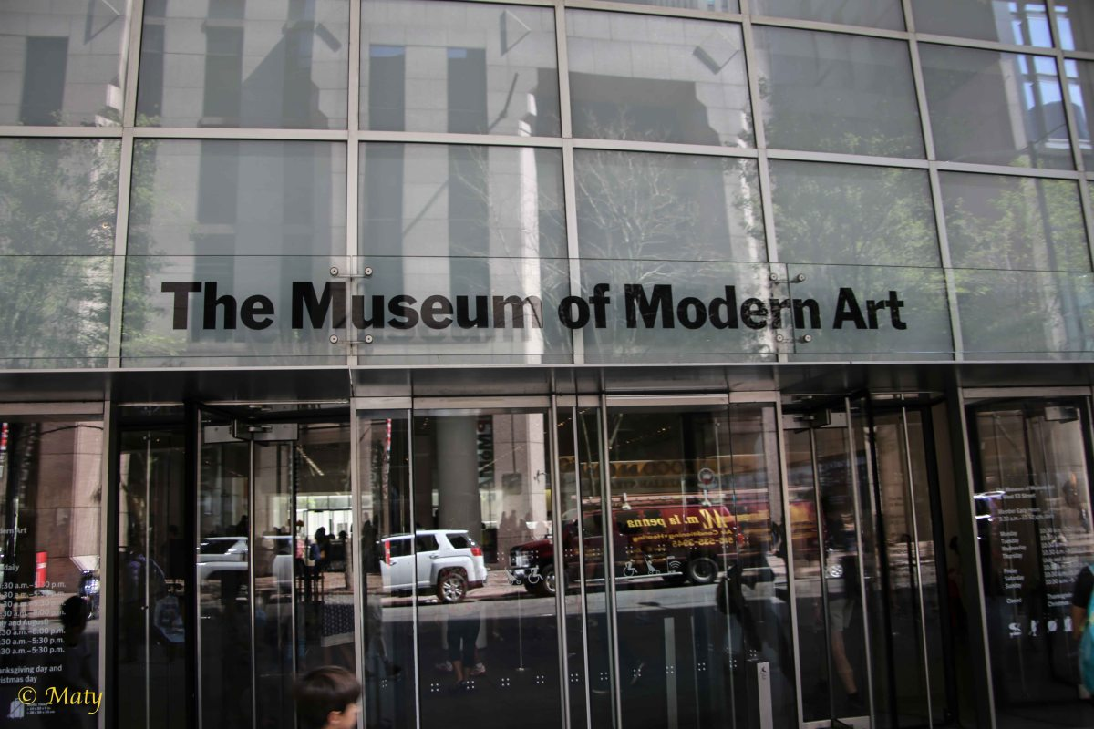 York City Museum Of Modern Art Moma Summer