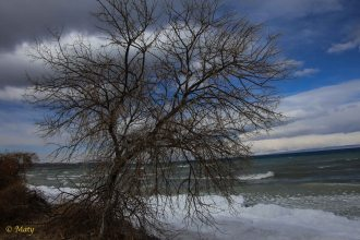 Winter time in the Issyk Kul Lake. It is cold...