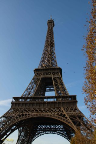 Eiffel Tower - Fall time