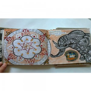 faye-suzannah-elephant