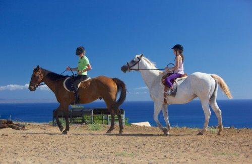 lahaina horseback riding