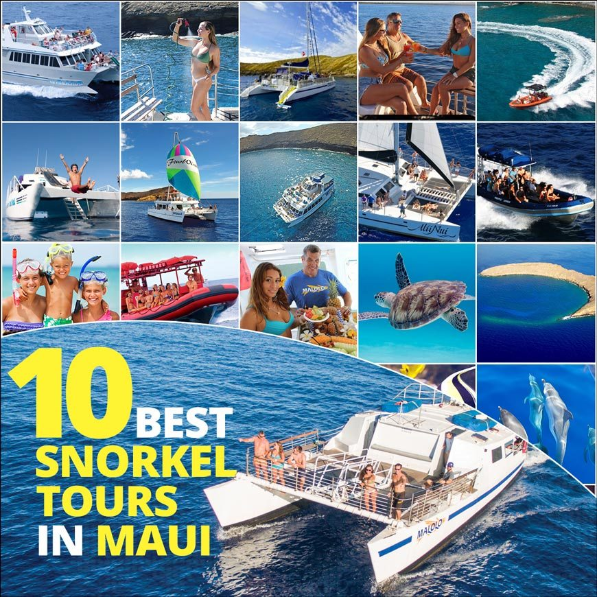 10 best snorkel tours in maui