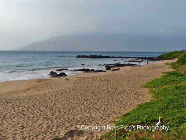 Kamaole Beach III, Kihei