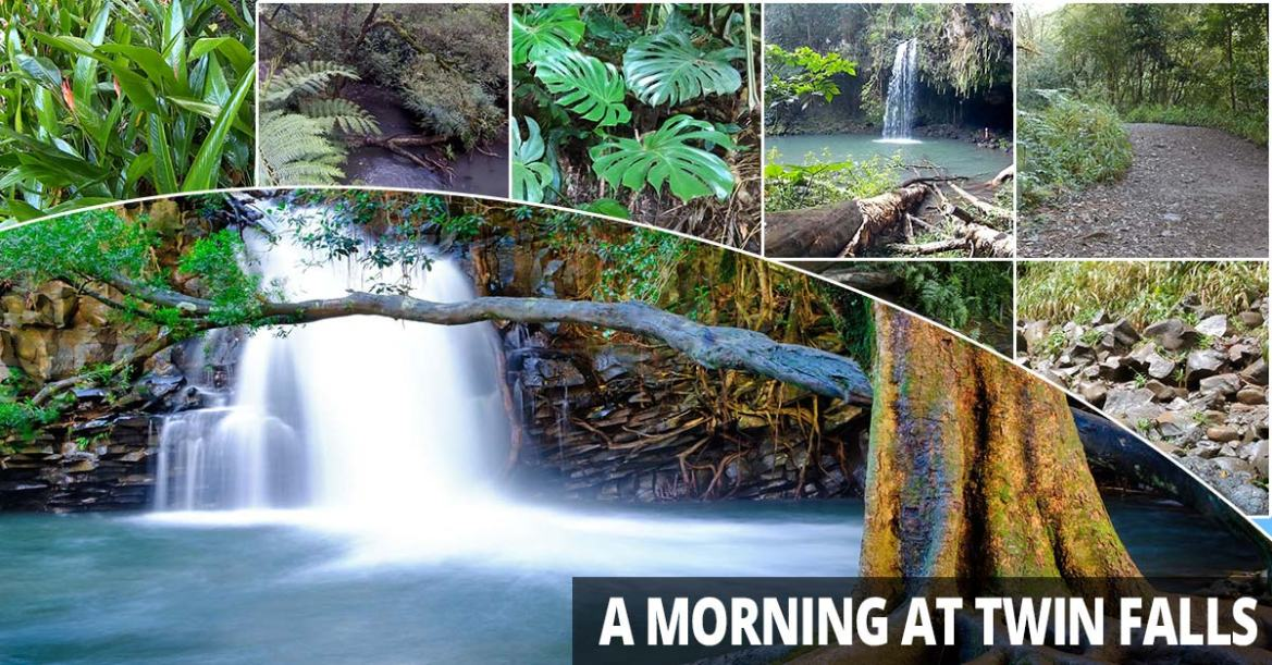 A Morning At Twin Falls with Boss Frog's
