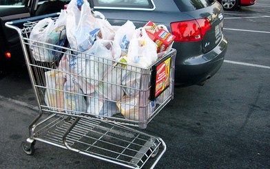 Image result for Shopping carts full of plastic bags