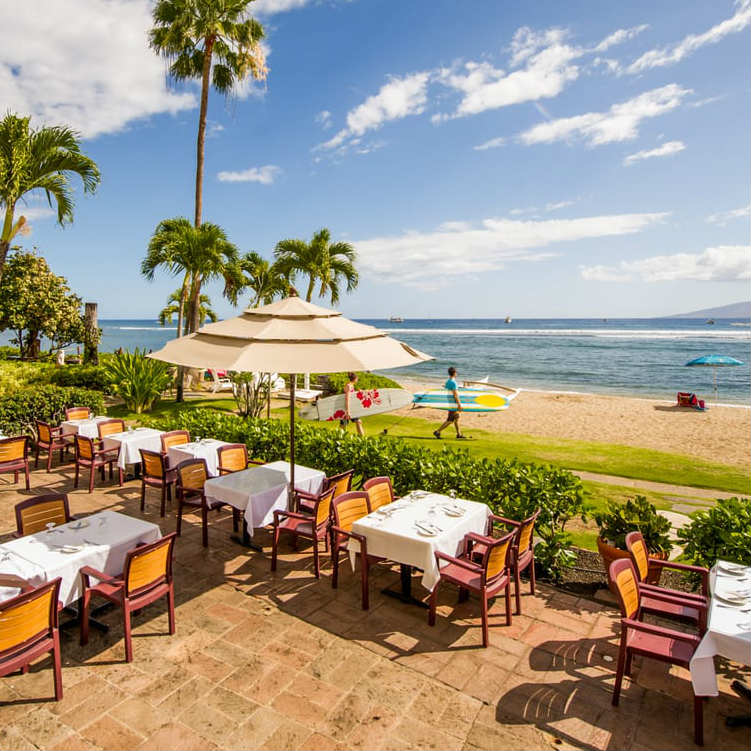 happy hour at pacifico restaurant maui hawaii