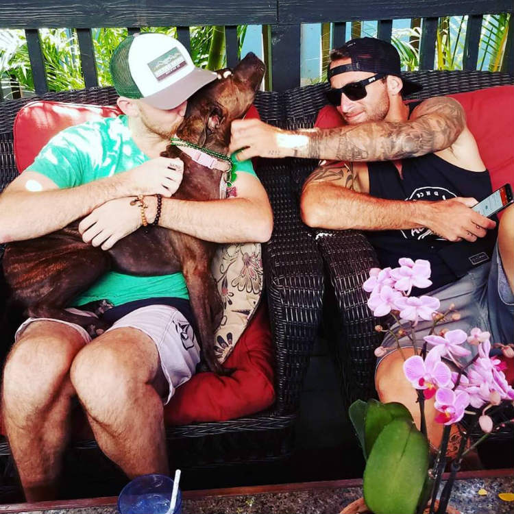 guys with dog at what ales you maui