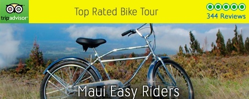 Top Rated Bike Tours