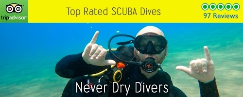 never dry divers