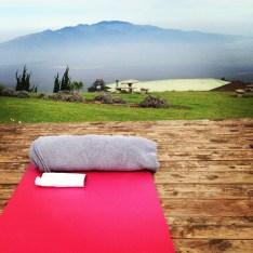 yoga lavender maui kula
