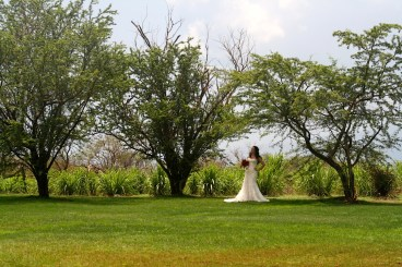 Ocean Vodka Wedding Venue Maui Hawaii Private